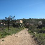 RUTA MTB 09 IBIZA TRAVEL: ES CAMP VELL