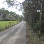 RUTA ROAD 17 IBIZA TRAVEL: DES PLANS