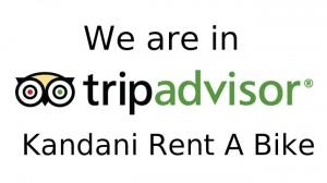 Trip-Advisor-Logo (2)